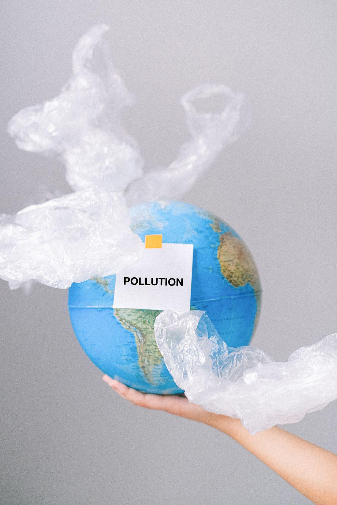 ¿Cuáles son los peores delitos contra el medio ambiente?